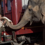 หนัง Water for Elephants
