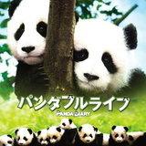หนัง Panda Diary