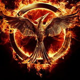 The Hunger Games : Mocking Jay part 1