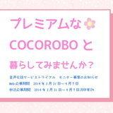 COCOROBO-Chan