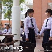 hormones 3