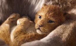 """ตัวอย่างแรก """"The Lion King"""" ทุบสถิติมียอดเข้าชมภายใน 24 ชั่วโมงสูงที่สุดของดิสนีย์!"""