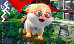 [รีวิว] Cats แอนิเมชันฟีลกู้ดสัญชาติจีนที่ดูแล้วอบอุ่นหัวใจ