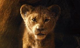 """ซิมบ้ามาแล้ว! ดิสนีย์ปล่อยตัวอย่าง """"The Lion King"""" รีเมกในรูปแบบไลฟ์แอ็กชั่นคนแสดง"""