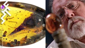 """ไดโนเสาร์ """"ตัวเล็กที่สุดในโลก"""" ถูกค้นพบในไข่ฟอสซิลสีเหลือง เหมือนในหนัง Jurassic Park"""