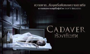 Cadaver ศพ ผีสิง