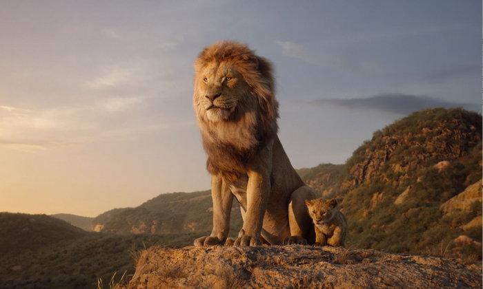 """รีวิว The Lion King ข้อจำกัดของ """"ความสมจริง"""""""