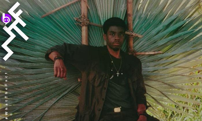 ฝ่าบาท Black Panther จะเป็นปู่โสมเฝ้าทรัพย์จากสงครามเวียดนาม ใน Da 5 Bloods ของ Netflix