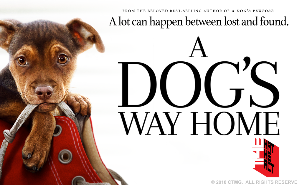 [รีวิว]a dog's way homeทั้งน่ารักและซาบซึ้ง