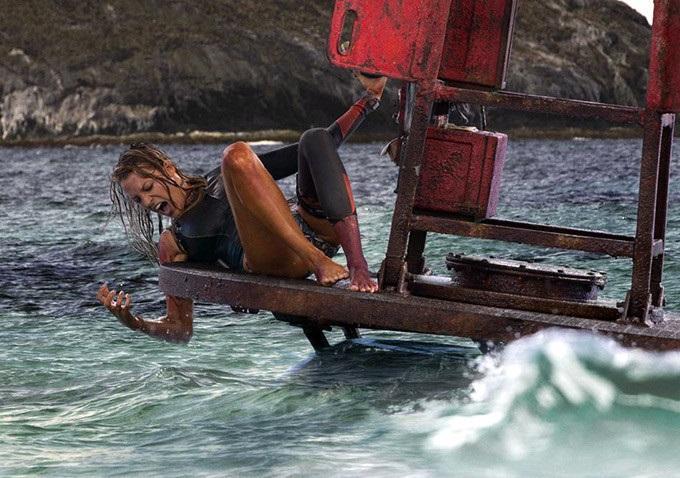 รีวิวหนัง The Shallows - นรกน้ำตื้น ฉลามขาว สายพันธุ์แข็งแกร่งและดุร้ายที่สุด