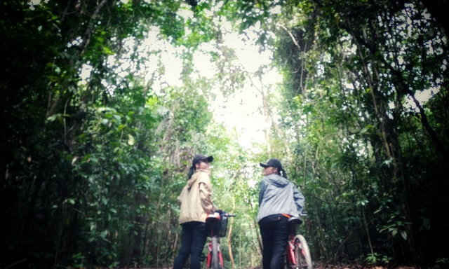 เที่ยวป่าในสิงคโปร์ โอ้โหแอดเวนเจอร์!