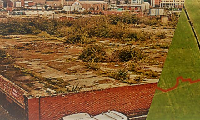 Brown field v. Green field