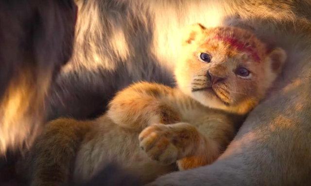 รีวิว The Lion King : นี่มันหนังสารคดีสัตว์นี่นา!!