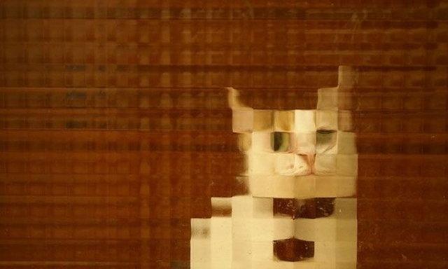 10 แมวสายพันธุ์ใหม่ลาย Pixel Art
