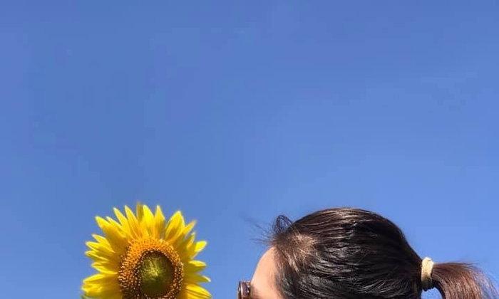 ชมดอกทานตะวัน...ไร่คีรีบูรพา ชลบุรี