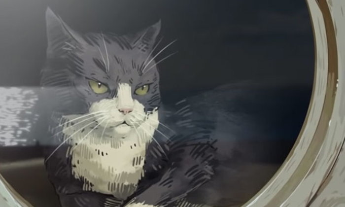 แซมผู้ไม่จม ตำนานแมวผู้รอดจากเรือจมถึง 3 ลำ