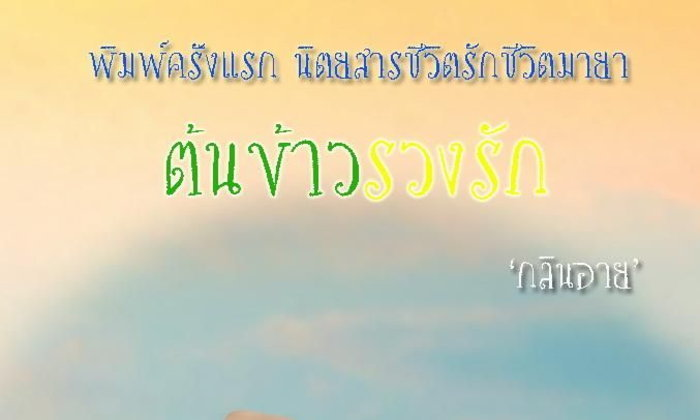 ต้นข้าวรวงรัก (1)