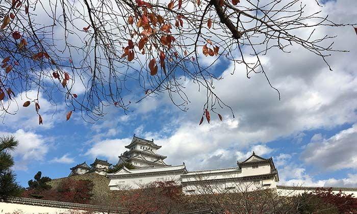 ฮิเมจิ ปราสาทขาวยอดฮิต แห่งญี่ปุ่น