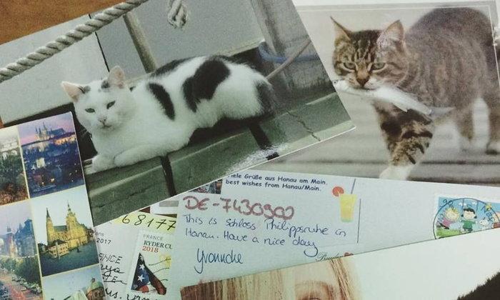 รีวิวส่งโปสการ์ดกับชาวต่างชาติผ่าน Postcrossing