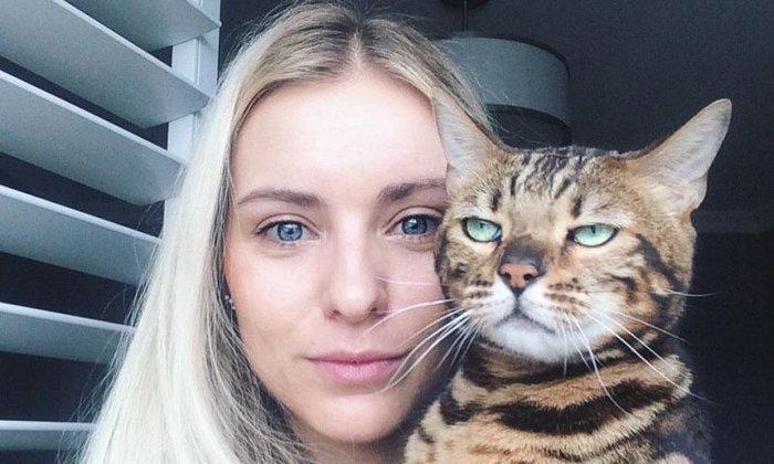 เอาที่มนุษย์สบายใจ! 12 ความรู้สึกของน้องแมวที่อยากให้ทาสแมวจงรับรู้