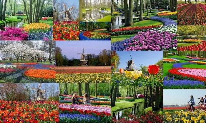 """""""5 สวนสาธารณะ"""" ที่สวยจนโลกตะลึง"""