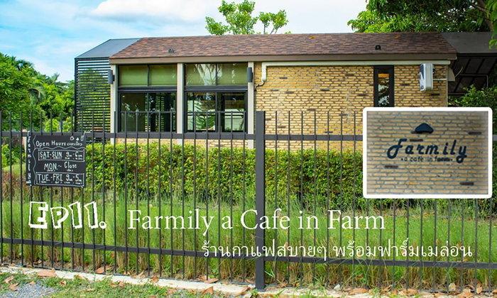 farmily a cafe in farm ร้านกาแฟ และฟาร์มเมล่อน อ.ปากเกร็ด นนทบุรี