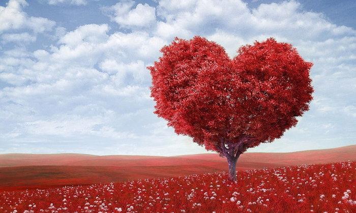 6 เหตุผลที่ความรักคือความรู้สึกที่ยิ่งใหญ่ #ข้อดีของการรักใครสักคน