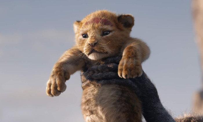 [รีวิว] The Lion King (2019) เจ้าป่ากลับมาผงาด !