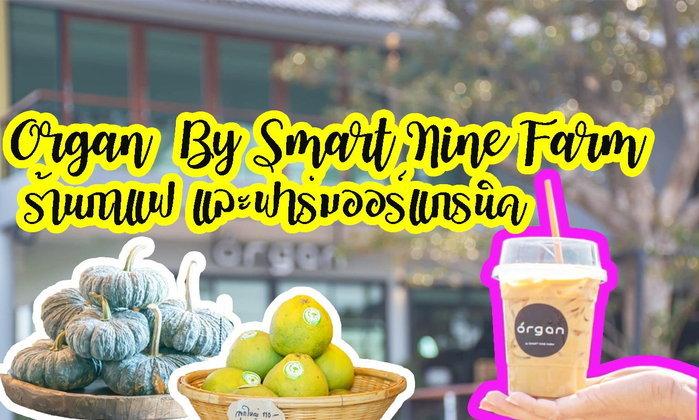 Smart Nine Farm และ ร้านกาแฟ Organ อีกหนึ่งบรรยากาศของฟาร์มออร์แกนิคจากแปลงเกษตรดีๆ บางใหญ่ นนทบุรี