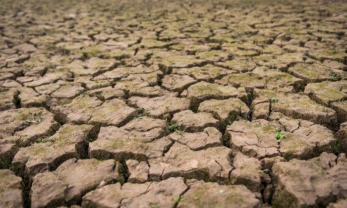 ภัยแล้งปี 2563 ส่อวิกฤติ คาดเสียหายราว 19,000 ล้านบาท