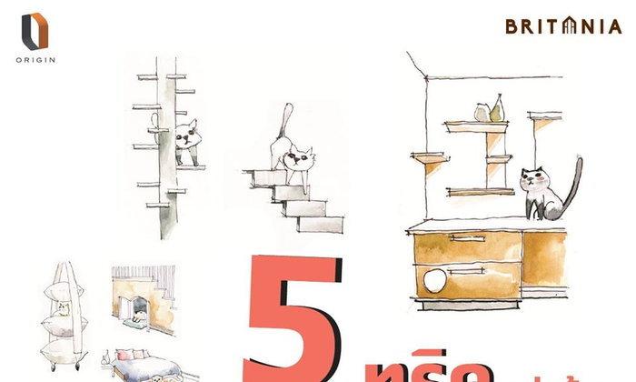 เผย 5 ทริค แต่งบ้านหมาแมว ให้คนและสัตว์อยู่ด้วยกันได้อย่างแฮปปี้