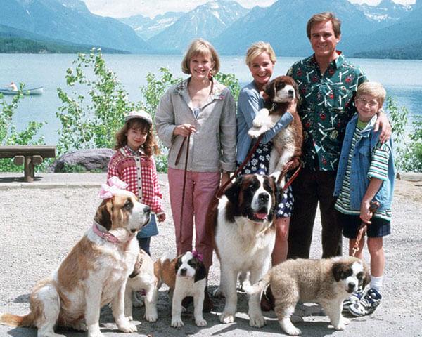 11 ภาพยนตร์เกี่ยวกับสุนัข ที่คนรักสัตว์ไม่ควรพลาด