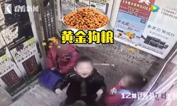 พ่อแม่รู้ไหมนะ? เด็กชายแกล้งจุ๊บเด็กหญิงในลิฟต์ ไม่แคร์กล้องวงจรปิด
