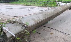 หนุ่มการไฟฟ้าดวงกุด ต้นไม้ล้มทับสายไฟ-ดึงเสาหักทับร่าง ดับคาที่