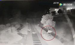 นาทีสะพรึง นักศึกษาสาวจีนโดนฝูงสุนัขไล่กัด วิ่งหนีตายระทึก