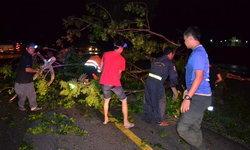 พายุกรรโชก ทำต้นไม้ล้มขวางถนน รถสองคันหักหลบ ชนพังยับ เจ็บ 2 ราย