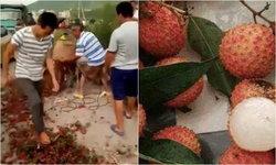 เกษตรกรจีนสุดช้ำ ลิ้นจี่ขายไม่ออก เททิ้ง-เหยียบเละกลางถนน