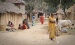 หญิงอินเดียให้นมลูกสาวหลังถูกงูพิษกัดไม่รู้ตัว สุดท้ายเสียชีวิตทั้งคู่