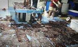 ดร.ธรณ์ เปิดภาพน่าหดหู่ ถุงพลาสติกเกือบร้อยใบในท้องวาฬเกยตื้น