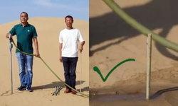 เพียงกะพริบตา เผยภาพการปลูกต้นไม้กลางทะเลทรายสไตล์จีน 10 วินาที เสร็จ