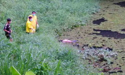 ญาติวุ่นตามหาหนุ่มใหญ่หายจากบ้าน 2 วัน พบเป็นศพอืดในสระน้ำวัด