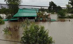 """""""แม่น้ำโขง"""" น้ำล้น ท่วมซ้ำ """"บ้านโนนนารี-โขงเจียม"""" กว่า 20 หลังคาเรือน"""