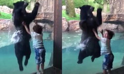 คลิปสุดน่ารัก เด็กชาย 5 ขวบ กระโดดโลดเต้นคู่หมีแว่น