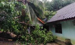หลังคาปลิวว่อน! พายุกระหน่ำพังงาเสียหายหลายครัวเรือน