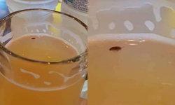 พูดมาได้! สาวเจอแมลงสาบในเบียร์สด ขอเปลี่ยนแก้วแต่โดนคิดเพิ่ม อ้างไม่ใช่แมลงของร้าน