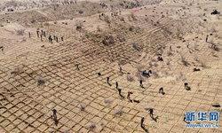 สู้กับธรรมชาติ จีนปูพรมฟาง หยุดการขยายตัวของทะเลทราย