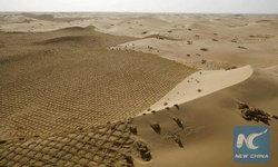 สำเร็จแล้วต้องไปต่อ มองโกเลียในเดินหน้าปลูกป่า หยุดการขยายพื้นที่ทะเลทราย