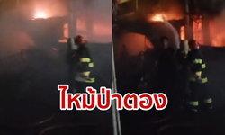 ไฟไหม้อาคารย่านหาดป่าตอง ภูเก็ต เจ้าหน้าที่ระดมฉีดน้ำดับเพลิง ยังไม่มีรายงานผู้บาดเจ็บ