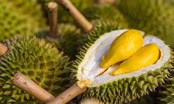 หูหนานเริ่มนำเข้าผลไม้โดยตรง ล็อตแรกเป็นทุเรียน-สับปะรดจากไทย