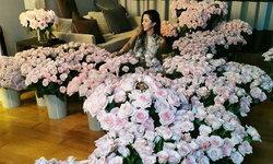 """""""ไอซ์ อภิษฎา"""" สายเปย์ จัดดอกกุหลาบเต็มห้องให้วันเกิดคนพิเศษ"""